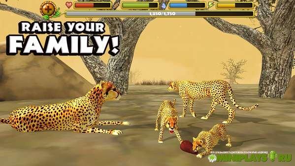 Cheetah themed bedroom