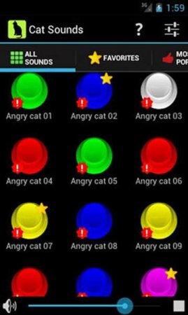 Звуки кошек (Cat Sounds)